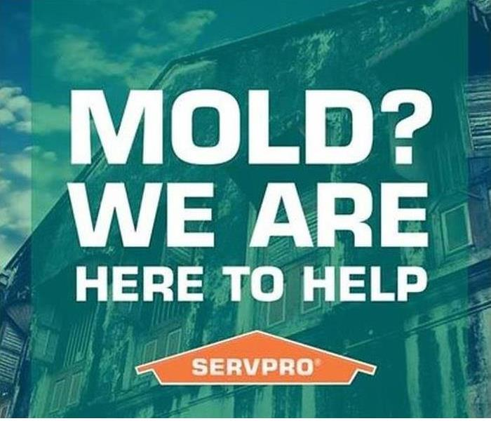 Faster to Any Mold Disaster!