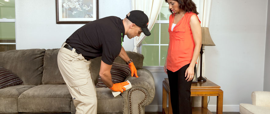 Grand Prairie, TX carpet upholstery cleaning
